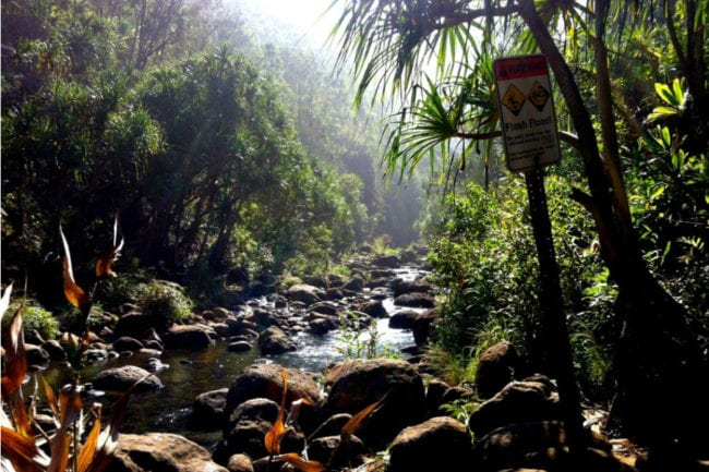 Bad Decisions on Kauai's Hanakapiai Trail thumbnail