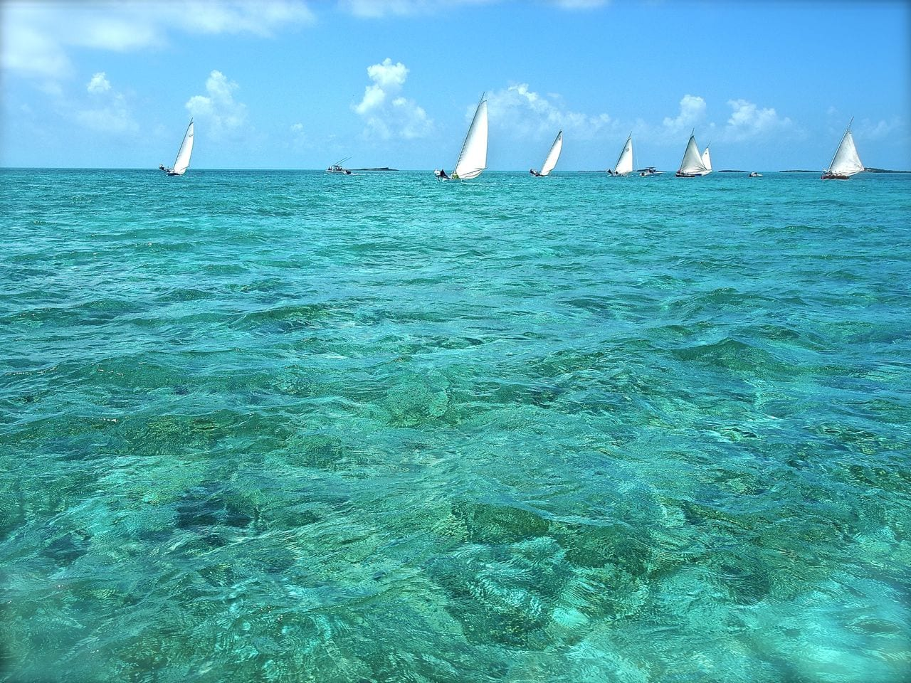 The Staniel Cay Black Point Regatta takes place on Emancipation Weekend every year
