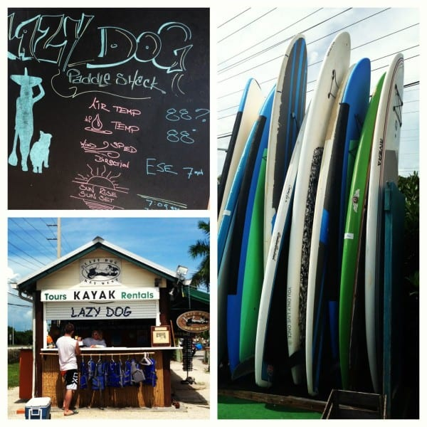 The Lazy Dog Paddle Shack