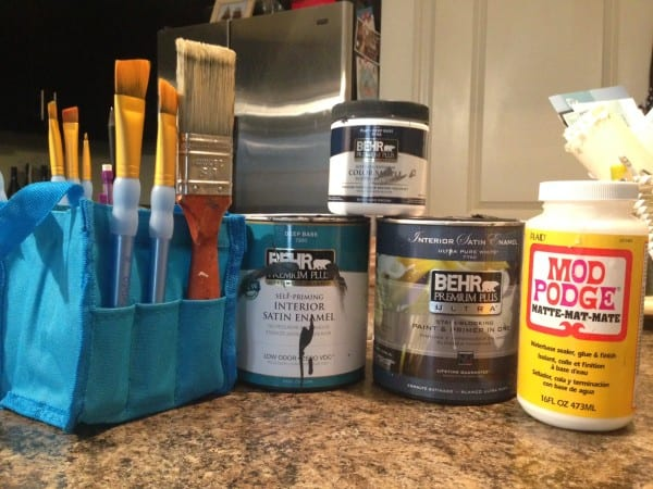 Paint, brushes & Mod Podge. Basically the entire contents of my pantry. (Nope, no food in there, sadly.)