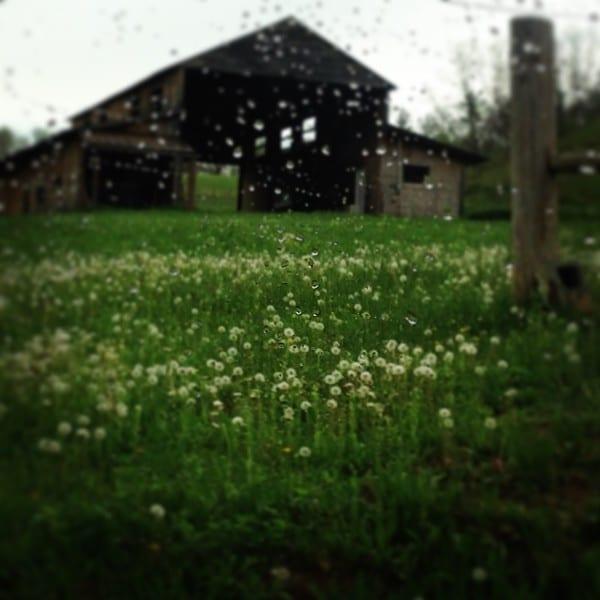 A broken down old barn