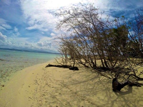 Puerto Rico Caribbean Palomino Island