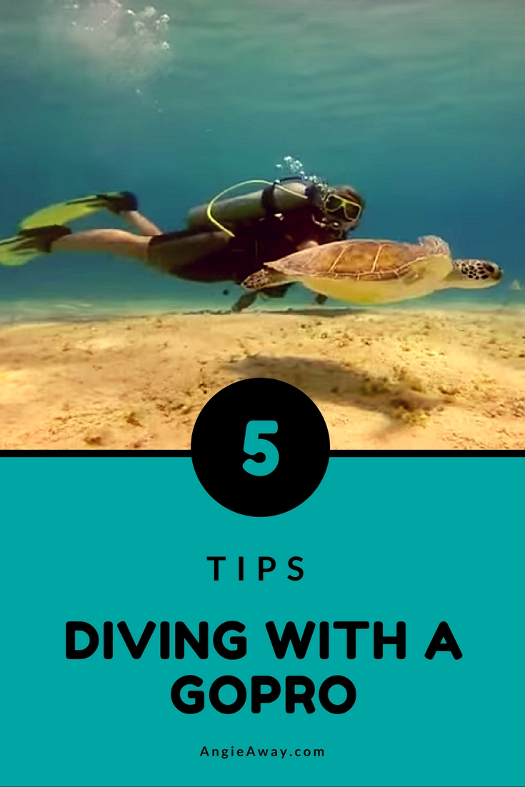 gopro underwater photography