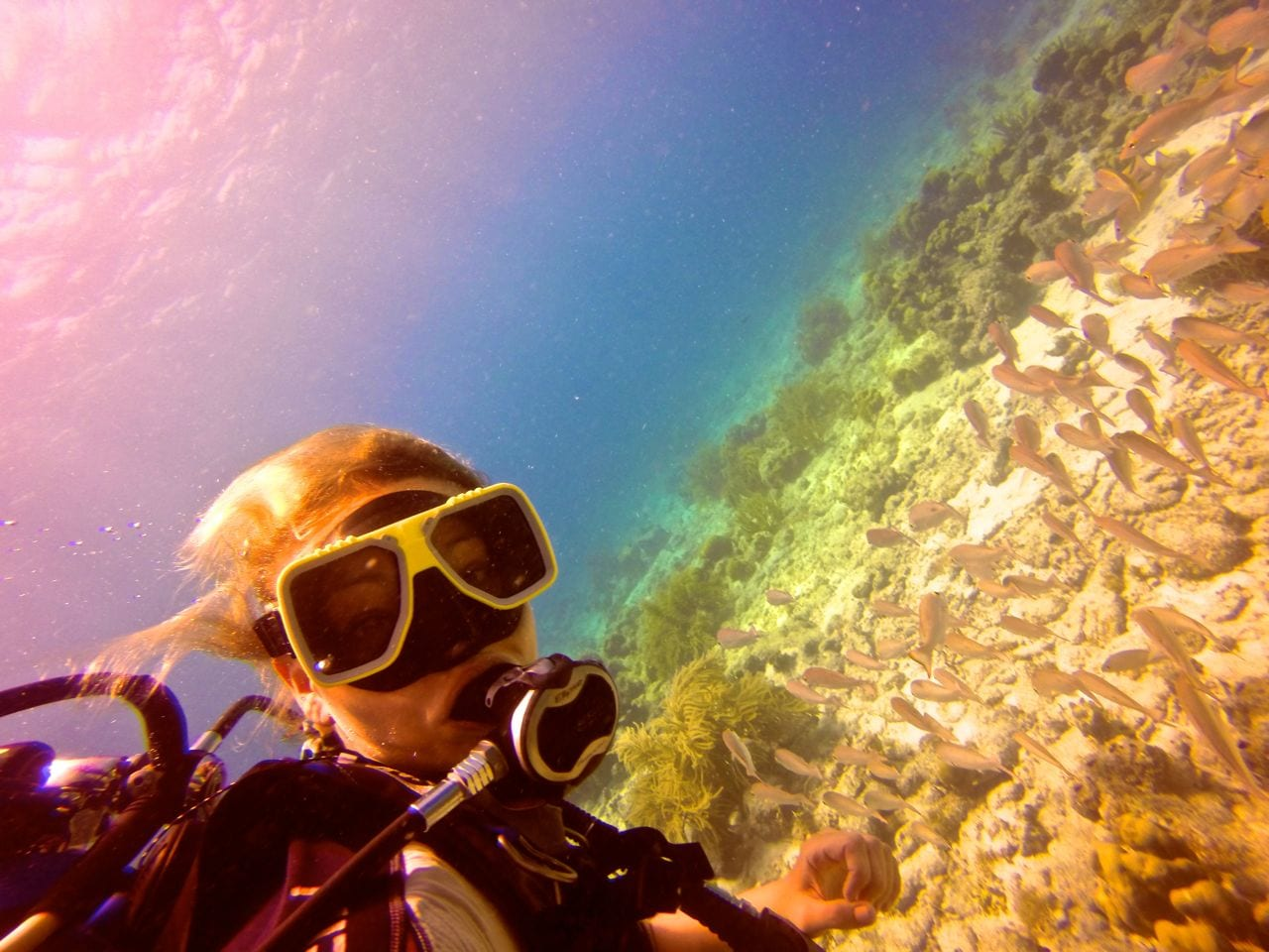 Scuba Diving with a GoPro: A Beginner's Guide thumbnail