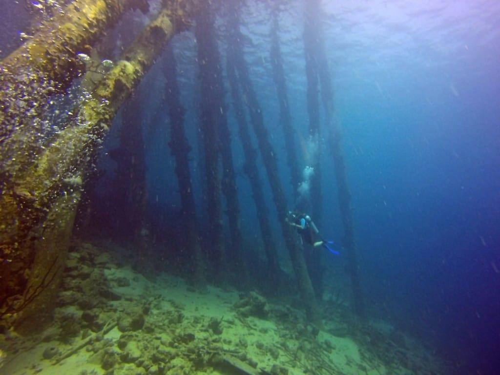 Angie Away Scuba Bonaire Salt Pier