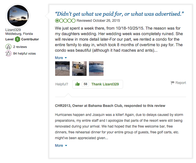 curious case disappearing tripadvisor reviews