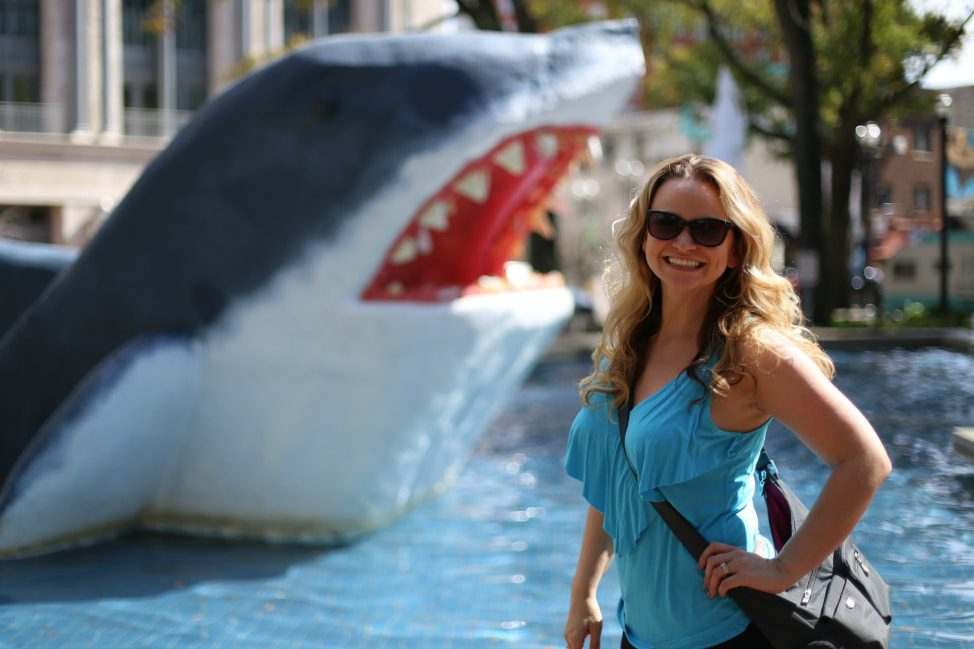 16 Gifts for the Shark Lover in your Life thumbnail
