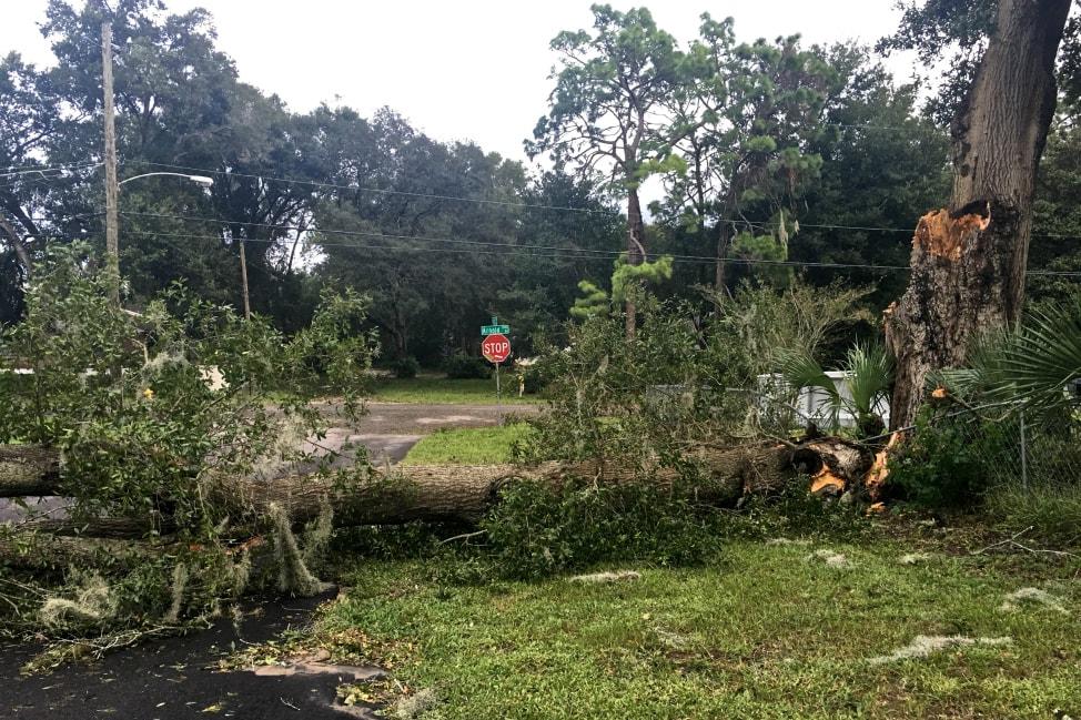 hurricane-matthew-jacksonville-10-min