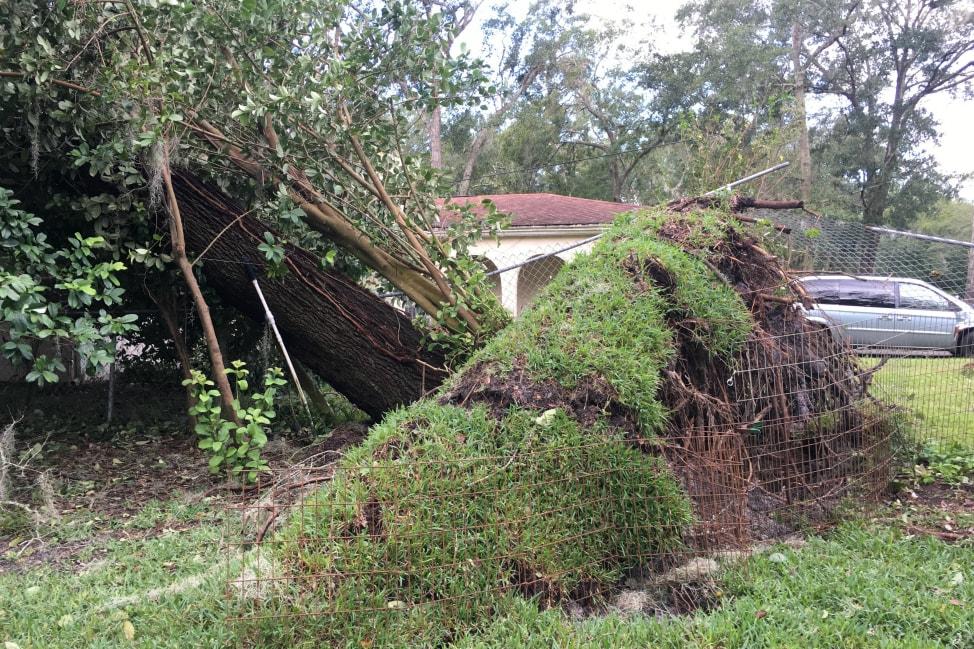 hurricane-matthew-jacksonville-12-min