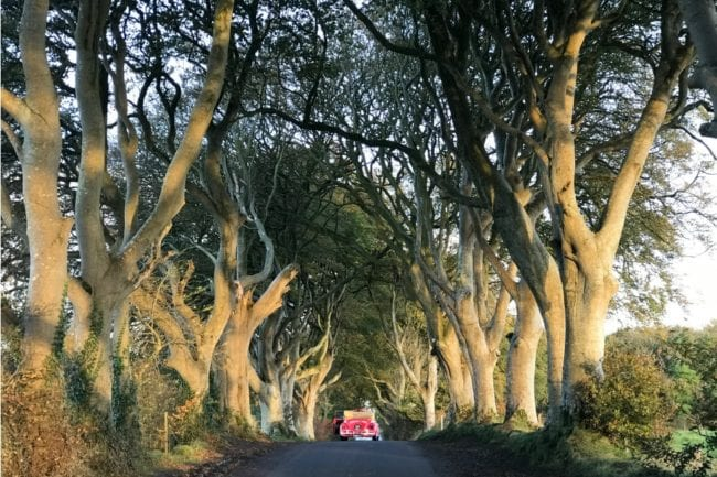 How to Take Epic Photos at The Dark Hedges thumbnail